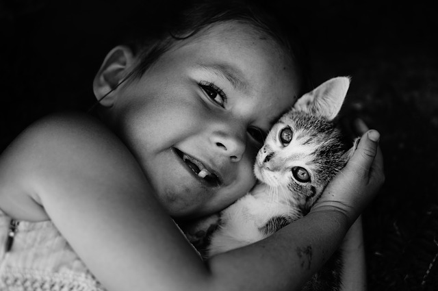 Děti a kočky